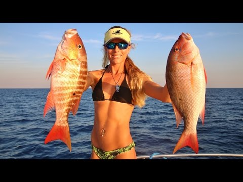 Florida Offshore Saltwater Bottom Fishing Ft. Weird Fish