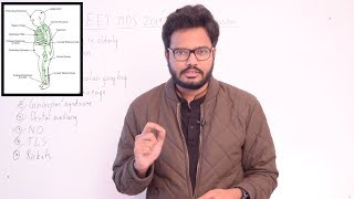 Paper Discussion 16 | NEET MDS 2019