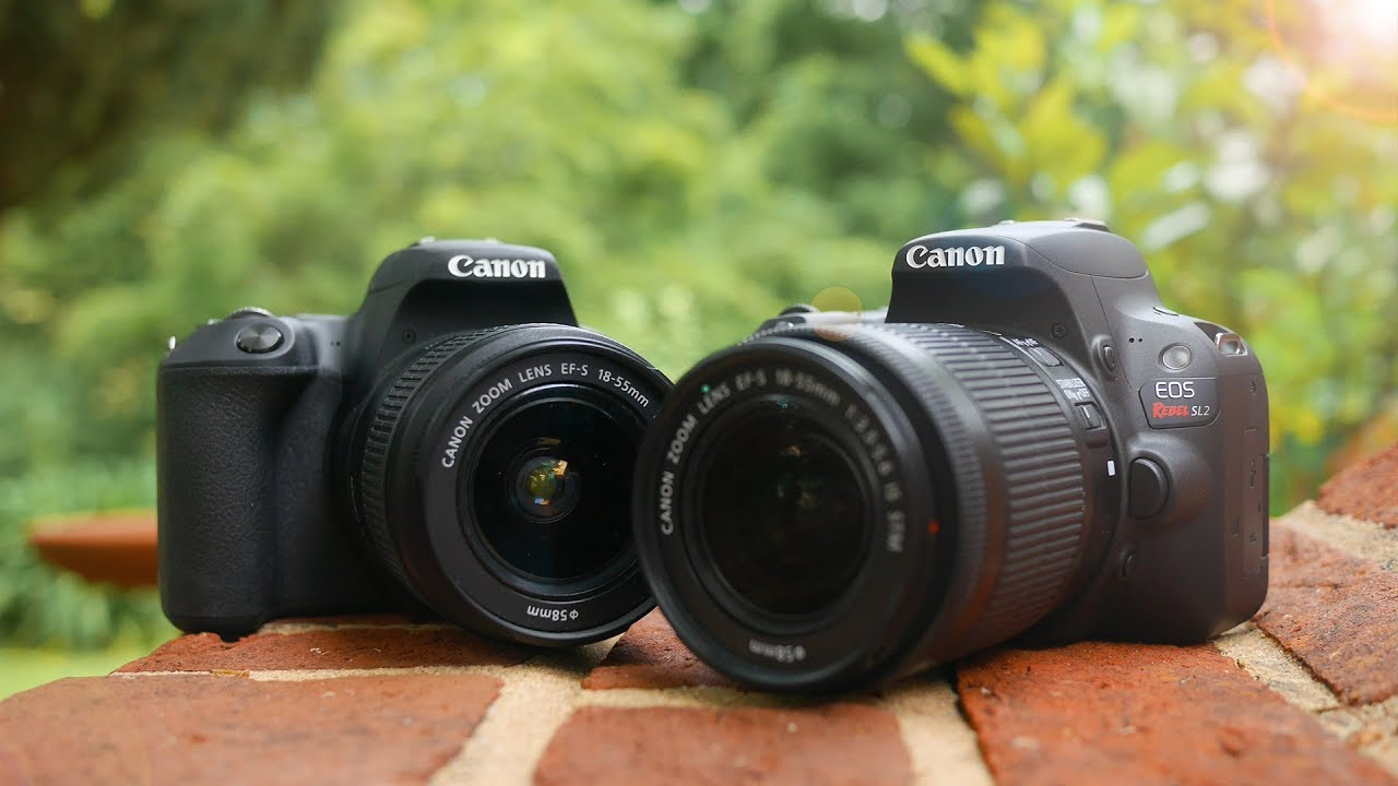 Canon SL2 (200D) vs Canon SL1 (100D) - What is the Best Canon ...