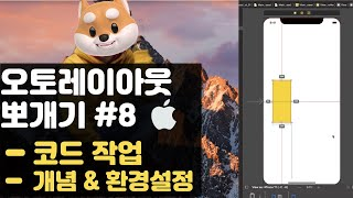 취준생을 위한 아이폰 앱개발 오토레이아웃 코드작업 fundamental Tutorial (2020) - ios autolayout programmatically, preview