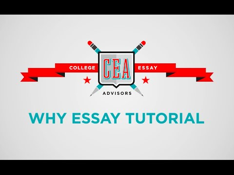 How To Do Admissions Essay Research: Why Essays from Michigan, Tulane, and Columbia