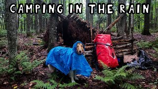 Camping in the Rain with My Dog
