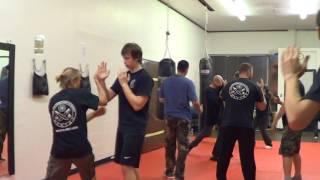 Kenpo fighting technique
