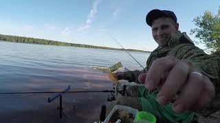 Рыбалка на Волге Фидер в начале июня Конаково 2021 отличный отдых но трудовая рыбалка Лещ где