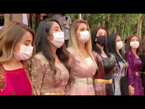KURDİSH GİRL DANCE - Rugeş Bazi Mîlane 2020 Full HD ByBedo