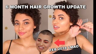 6 MONTH HAIR GROWTH UPDATE (Shaved Head)