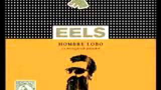 Watch Eels The Longing video