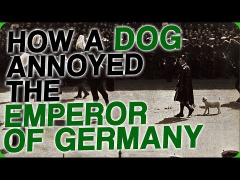 How A Dog Annoyed The Emperor Of Germany