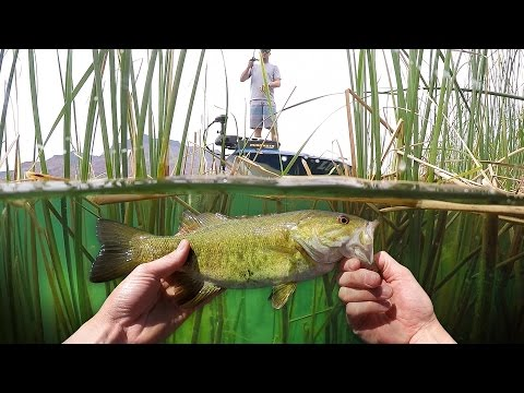 Thumbnail: Fishing in Crystal Clear Water! - Vlog (Bass Fishing) Powered by LTB