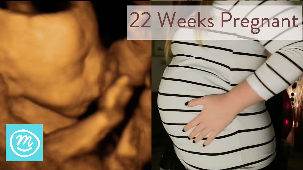 22 Weeks Pregnant: What To Expect - Channel Mum