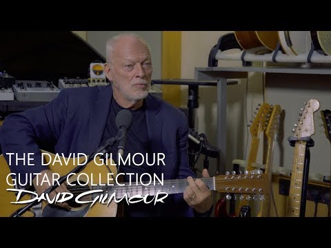 The David Gilmour Guitar Collection