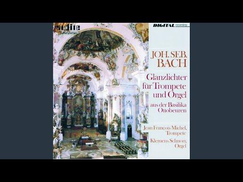 Konzert In D-Dur, BWV 972: Larghetto (nach Antonio Vivaldi)