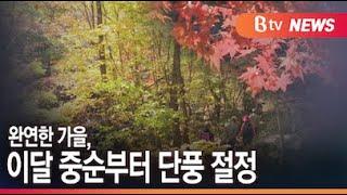 완연한 가을…단풍 절정 시기는