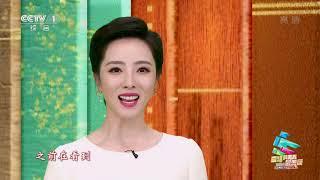 [2020年五四青年节特别节目]视频连线 青年医护人员杜富佳及家人 主持人:李思思| CCTV