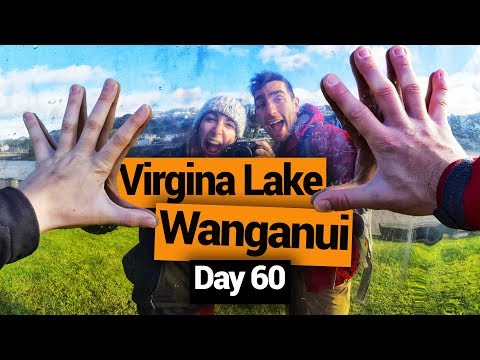 Wanganui Market & Virginia Lake - New Zealand's Biggest Gap Year – Backpacker Guide New Zealand