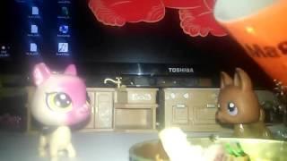 Видио от канала фонаты миникошки видио кухня