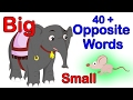 40+ Opposite Words For Kids | Learning Videos For Preschool | Kindergarten Videos
