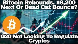Crypto News   Bitcoin Rebounds, $9,200 Next Or Dead Cat Bounce? G20 Not Looking To Regulate Cryptos