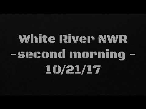 White River NWR Hunting Late Oct. 2017
