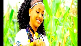 Ethiopian - Melese Kasahun - Hemre Bikule zeyo - New Ethiopian Music 2017(Official Video)