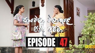 Paawela Walakule | Episode 47 25th January 2020 Thumbnail