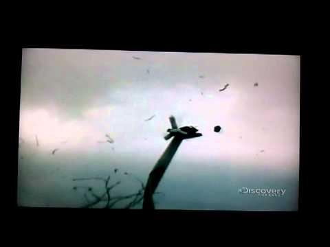 video 2011 03 05 13 13 56