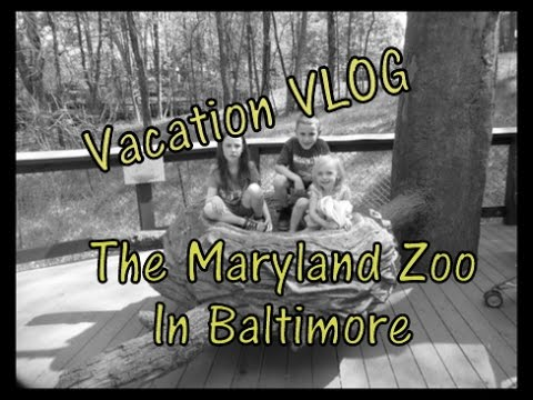 Maryland Zoo in Baltimore| Vacation Vlog #1 | MommyDani2