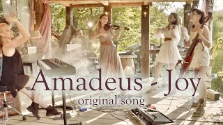 Amadeus Electric Quartet - JOY