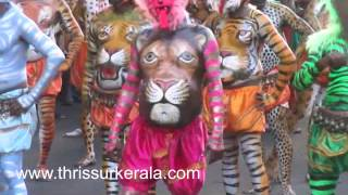 Pulikali 2014 Thrissur District