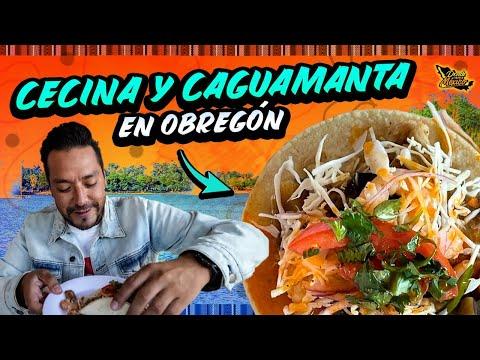 La Deliciosa CAGUAMANTA, TACOS DE LENGUA Y CECINA | Cd. Obregón Día 17 #DondeiniciaMexicoLRG
