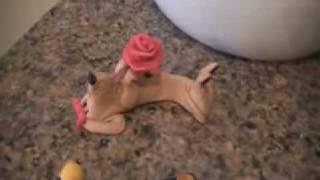 Dachshund, Schnauzer, Cocker Spaniel {for Ebay Use}