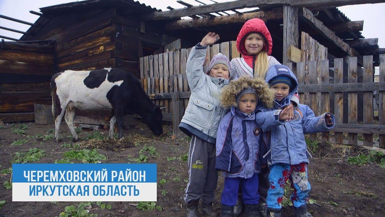 Корову в подарок получила многодетная семья из Новогромово от депутата ЗС Виктора Побойкина.