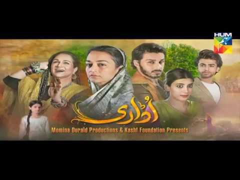 Udaari Episode 14 HD Full Hum TV Drama 10 July 2016