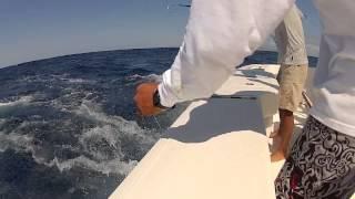 Guerrero Azteca Sportfishing - Cabo 2012