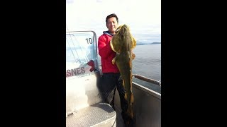 Fishing in Northern Norway - Solent Fishing Guide at mefjord Brygge 2013 part 2