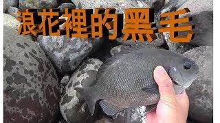 釣魚Fishing-7 厚殼大軍來襲~浪花裡的黑毛