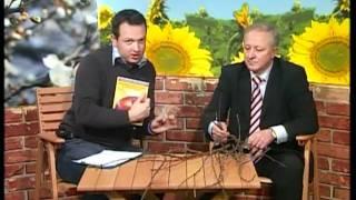 Repeat youtube video Pravilno orezivanje voca. Savet profesora Keserovica
