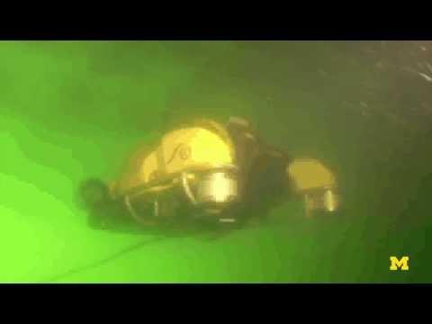 Underwater Robotic Bomb Squads