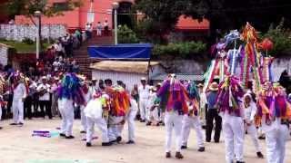 TAMPULANES EN HUEHUETLA HIDALGO