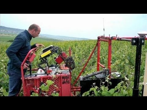 Dephy ecophyto des solutions innovantes youtube - Chambre agriculture aube ...