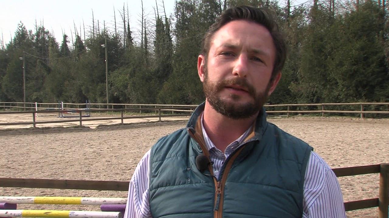 Yvelines | Equitation : Adrien Collet, objectif jeux paralympiques 2024