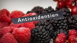 Anti-Oxidantien – Rote Beeren und Nüsse als Geheimwaffe