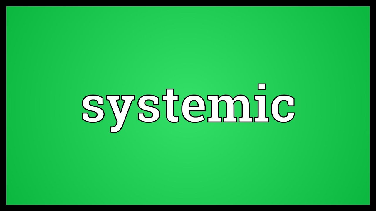 Systemic Meaning - YouTube