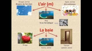 Французский с нуля, Интересное о французских словах