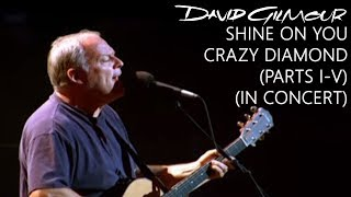 David Gilmour - Shine On You Crazy Diamond (Parts I-V) (In Concert)