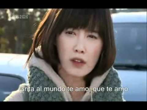 boys before flowers: making a lover - ss501 (sub esp)