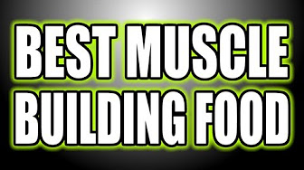 Best Bodybuilding Food Scale