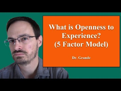 What is Openness to Experience?