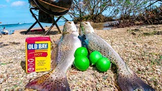 Trout Catch and Cook Summer Fishing for Food