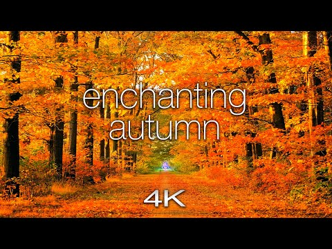 ENCHANTING AUTUMN In 4K UHD - 1 Hour Of Amazing Fall Nature Scenes + Spa Music By Nature Relaxation